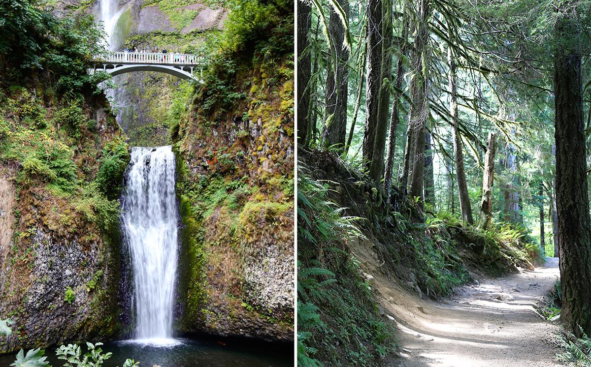 The Explorers Edit - Multnomah Falls & Eagle Creek Hike